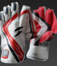 Ton Club Series Wicket Keeping Gloves