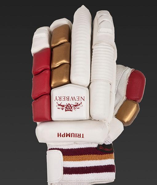 triumph-glove-back