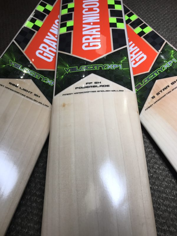 gray nicolls velocity xp1 cricket bats