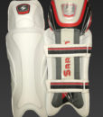 SS Ton Players Wicket Keeping Legguards