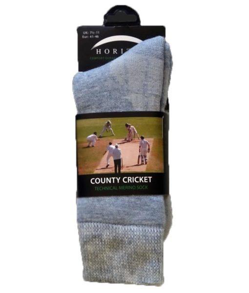 horizon-county-cricket-large
