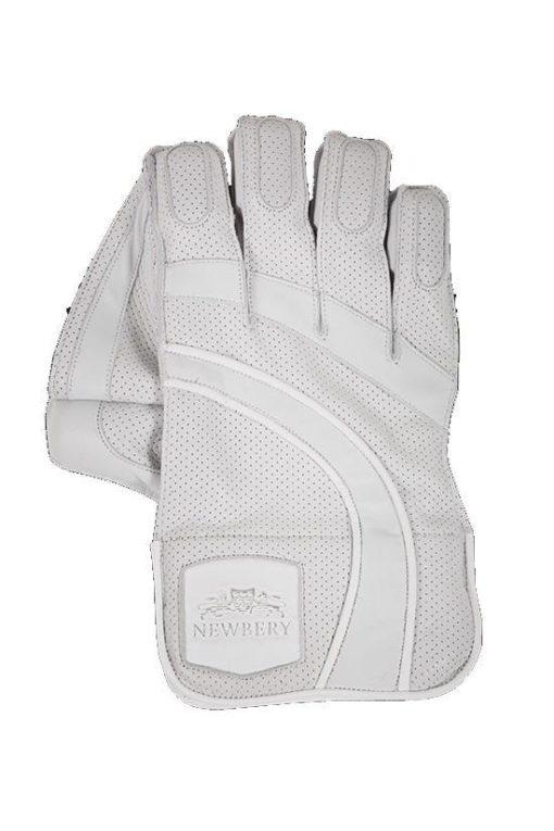 White-Wicket-Keeper-Glove-Front-1.jpg